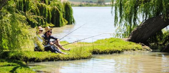 Murray Bridge, Australia: Fishing on the Murray River