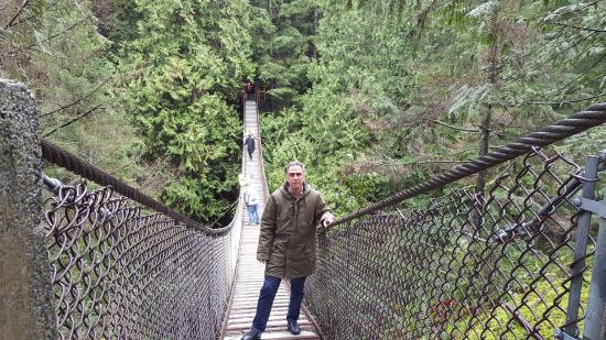 Lynn Canyon Park Lynn Valley suspension bridge & Lynn Valley suspension bridge - Picture of Lynn Canyon Park North ...