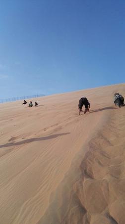 Liwa Oasis, Emiratos Árabes Unidos: Climbing up the Worlds largest sand dune !