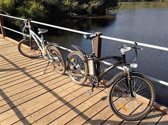Riverview Tourist Park: Electric bike hire