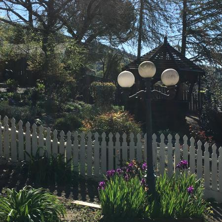 Cloverdale, CA: Back garden, with leaning gazebo made of an retired wood water tank