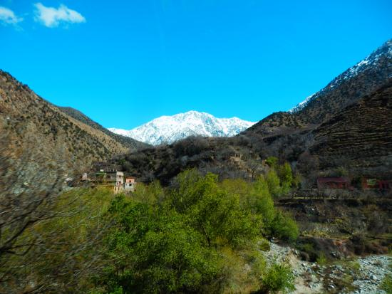 A really lovely trip to the Atlas Mountains
