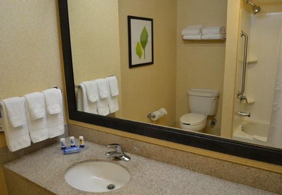 Aiken, Carolina del Sur: Guest Bathroom