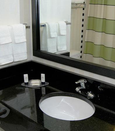 Fairfield Inn & Suites Nashville at Opryland : Guest Bathroom