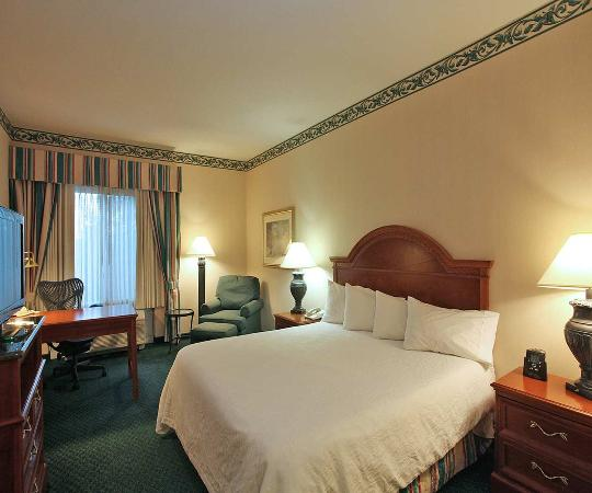 Chesterton, Ιντιάνα: Spacious King guest room