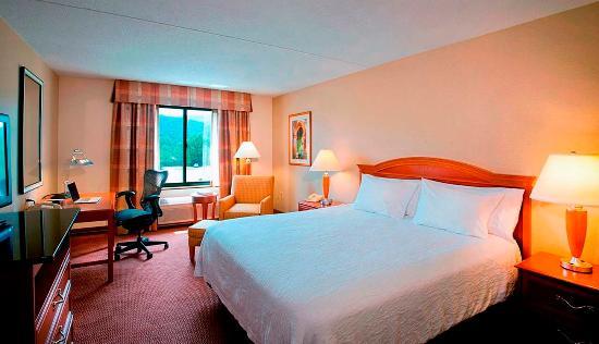 Hilton Garden Inn Poughkeepsie/Fishkill: Standard King Guestroom