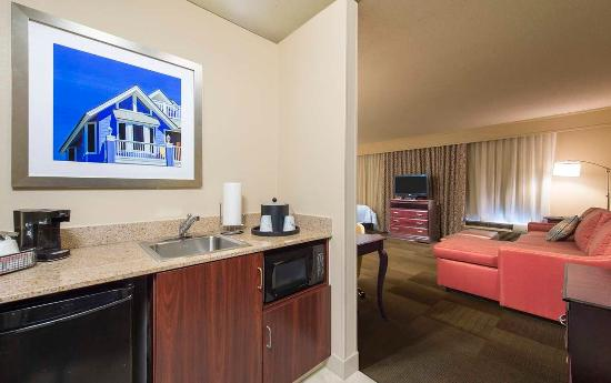 Hampton Inn & Suites Pensacola I-10 North at University Town Plaza: Studio Suite Wet Bar