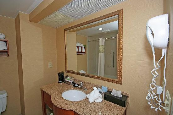 Max Meadows, VA: Bathroom