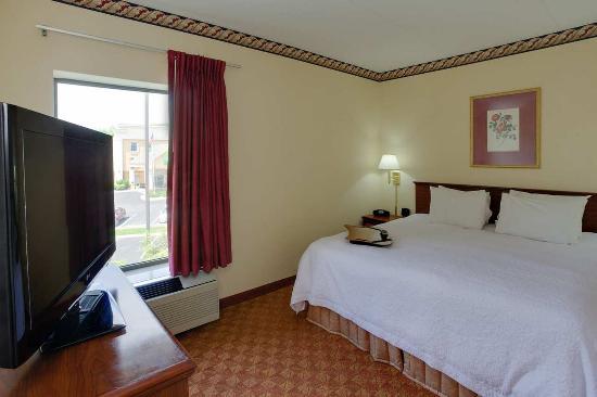 Hampton Inn Hanover: 1 King Bed Guest Room