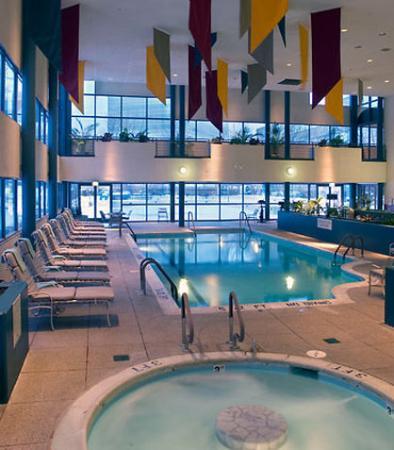 Chicago Marriott Schaumburg : Indoor / Outdoor Pool