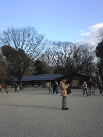 上野の森 パークサイドカフェ