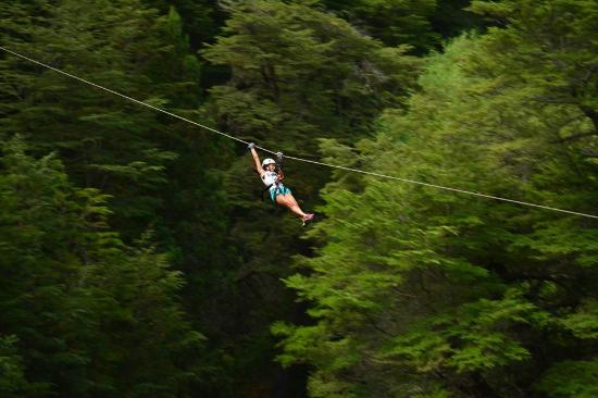 Patagonia Canopy Tour