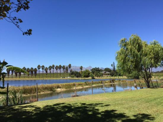 Skilpadvlei Wine Farm : View from the patio