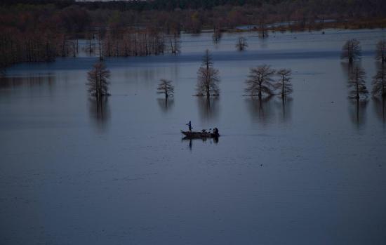 Black bellined whistling duck picture of sheldon lake for Sheldon lake fishing