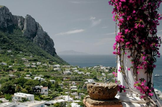 Capri Day Tour: capri panoramic