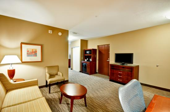Hilton Garden Inn Tampa Northwest / Oldsmar : Suite Living Room