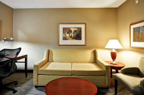 Hilton Garden Inn Tampa Northwest / Oldsmar : Living Room Sofa