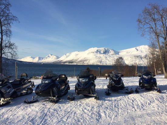 Lyngen, Norge: photo3.jpg
