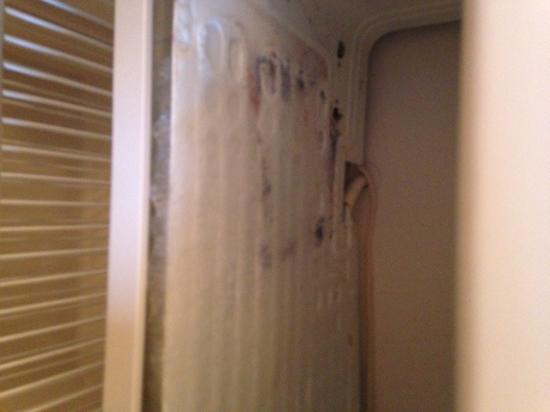 GuestHouse Inn Yakima: The mold in the freezer of a so called room that had been cleaned prior to my wifes stay there.