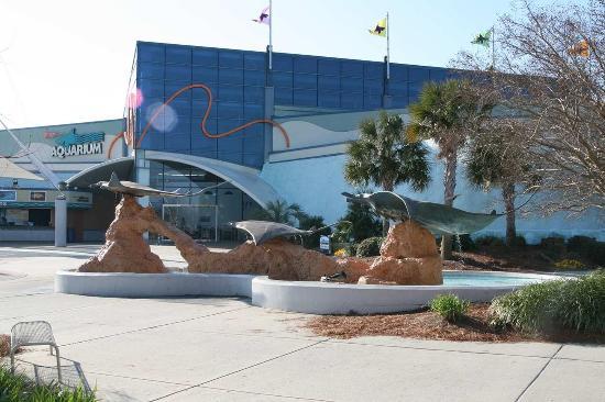 هامبتون إن ميرتل بيتش ويست: Ripley's Aquarium