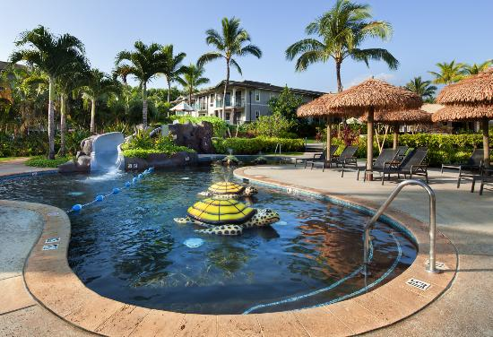 Westin Princeville Ocean Resort Villas: Kids Pool