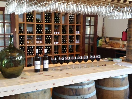 Richmond, Canada : Featuring a variety of red and white wines harvested from their vineyard in the Ottawa region