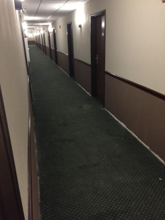 Glendale Heights, IL: Black mold.  Blood in hallways.  Taped on room numbers.   Worst hotel I have ever seen!!