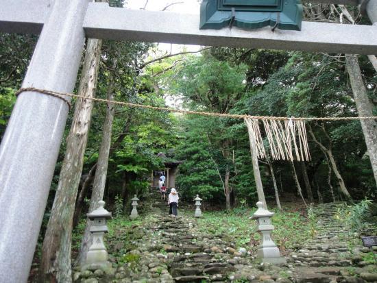 御蔵島的民宿