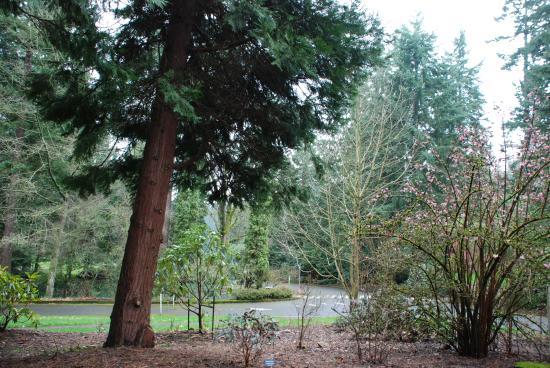 Photo of Botanical Garden Washington Park at 1715 South West Skyline Boulevard, Portland, OR 97221, United States