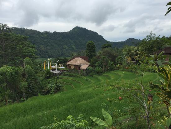 Surya Shanti Villa: Absolutely gorgeous
