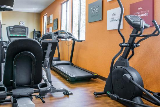 Comfort Suites Auburn Hills: Fitness center