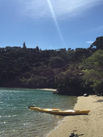 Sea Kayak Adventures - Day Tours: Putanui point Ferndale