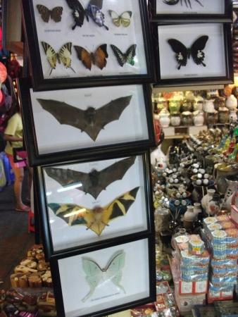 russian market framed insects