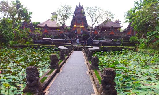 lotus flower picture of saraswati temple ubud tripadvisor rh tripadvisor com
