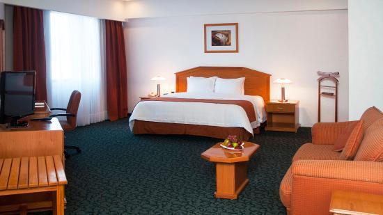 Holiday Inn Plaza Dali Mexico City: Junior Suite