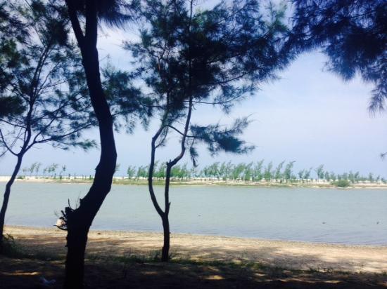 Tuban, Endonezya: berteduh mneikmati pemandangan dibawah pohon