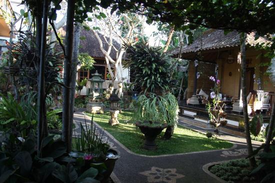 테바 하우스 이미지