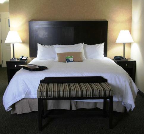 Hampton Inn & Suites Woodward: Studio Guest Room
