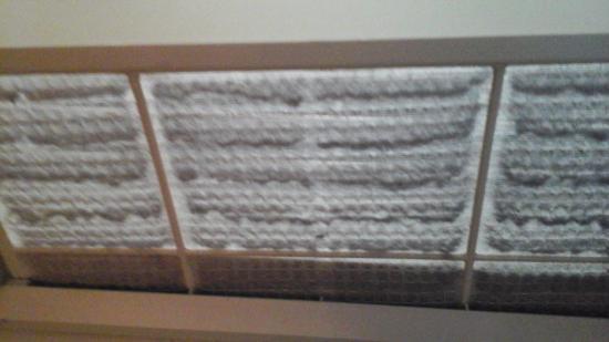 Shilo Inn Rose Garden: Dirty Ac/heater Filter