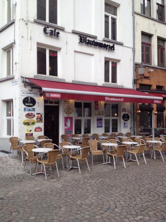 Cafe Blauwmoezel