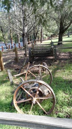 Sanborn Park: Pic 3