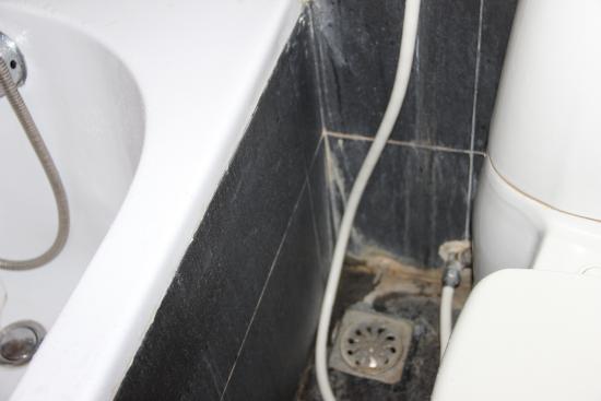 moisissures dans la salle de bain entre baignoire et wc. Horrible ...