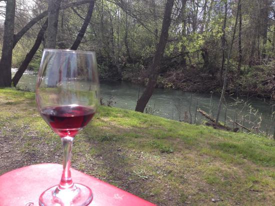 Healdsburg, CA: Enjoying the wine and the view.