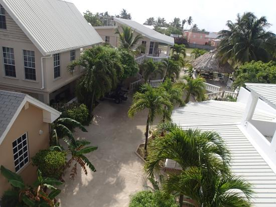 Iguana Reef Inn: Property view from the Penthouse