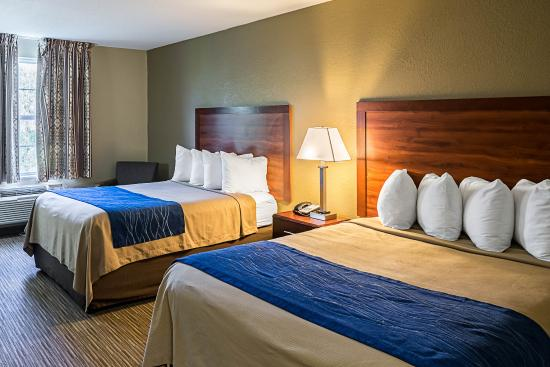 Quality Inn: Guest room with two beds