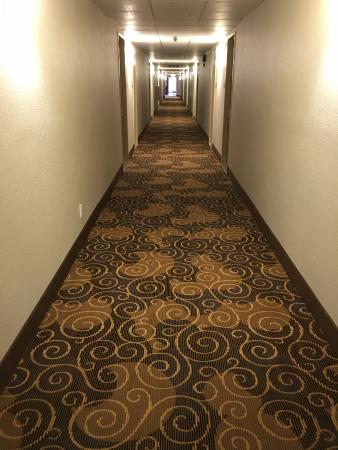 Travelodge Iowa City: new carpet in hallways