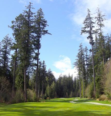 Roberts Creek, Kanada: Big trees, blue skies. Great Golf