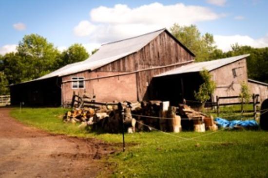 Callicoon Center, État de New York : The Barn