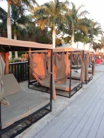 Port Saint Lucie, فلوريدا: No reservations for loungers - no seat hogs allowed