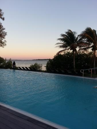 Port Saint Lucie, فلوريدا: Infinity Adults only pool